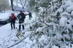 山东多地仍有降雪 多条高速因雪临时封闭或限行