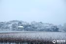 杭州西湖雪景醉人