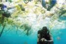 巴厘岛水下遍布垃圾