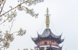 南京入春道路有些坎坷 明后天最高气温只有8℃