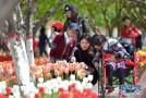 石家庄植物园:观花赏景度周末