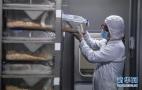 生物医药助经济振兴