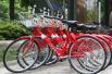 杭州公共自行车新功能迎击共享单车