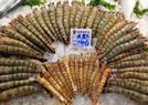 青岛休渔期海鲜市场