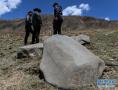 青海玉树称多县发现大批岩画