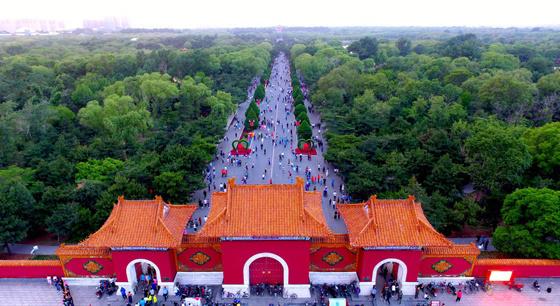 """沈阳300万平 """"城市绿肺""""引市民呼吸新鲜空气"""