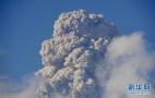 核污染30年:切尔诺贝利,还有自然恢复的可能吗?