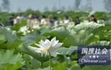 今夏最热?中国气象局:未来夏季极端高温事件将更频繁
