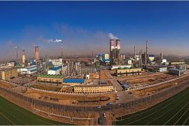 河南心连心化工集团股份有限公司正式揭牌