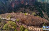 """井陉""""天路""""如玉带 串起24个古村落"""