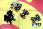 沧州市第一中学团队在世界机器人奥林匹克竞赛中夺冠