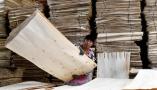 山东费县:木业产业助推乡村振兴