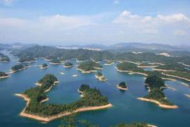 """千岛湖首次对外发布旅游大数据,""""鱼头""""成了热搜"""