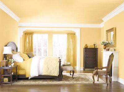 深色地板窗帘窗帘木地板客厅图片11