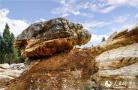 """湖北三峡夷陵现罕见奇石""""百龟"""" 千姿百态 恰如仙境"""