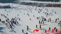 春节沈阳人热衷于滑雪 从吃吃喝喝演化成锻炼身体