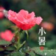 天津周四迎小暑
