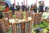 南京下个月将有9000套房源上市