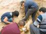 西安科学家又出新成果 剑齿象从兰州盆地走向非洲