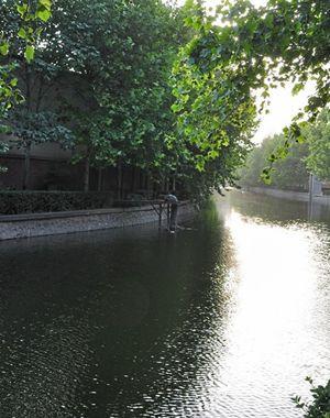 民心河65座雨水闸门保持开启状态