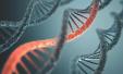 被忽视的遗传警告险些要了我的命——一位肿瘤医生的自述