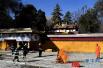 西藏拉萨市消防支队开展文物古建灭火救援综合应急演练