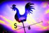 证监会:严查上市公司铁公鸡、高送转行为