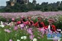 新加坡媒体:中国依然是外国人最安全旅游目的地
