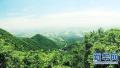 驻马店市确山县创国家森林城市建生态美丽老区