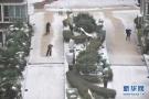 湖南长沙都下雪了!