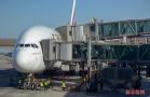 揭机场各项服务系统