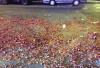 春节哈尔滨鞭炮碎屑同比少10吨 文明过节蔚然成风