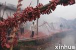 济南社区禁放员的春节日记:天天巡查2万步 没见一个放鞭
