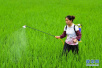 山东将开展农药安全生产督导工作 每市抽查不少于2家