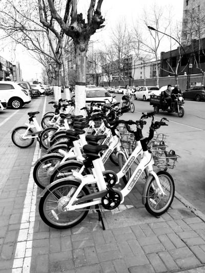 开封街头的哈罗共享电踏车