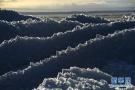 乌伦古湖现风积冰山