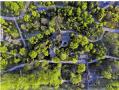 4月是扬州最美的季节 飞瞰扬州绝色春景