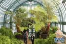 比利时皇家温室