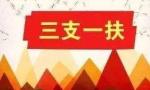 """2018年山东""""三支一扶""""计划招募1543人"""