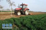 北京农地土壤10年来减少化肥用量近四成