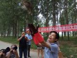 河南兰考:黄河滩上22只野生鸟儿放归大自然