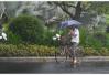 """""""云雀""""飞来 本周末安徽高温将有缓解 多地将出现大到暴雨"""