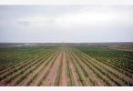 受权发布:中华人民共和国土壤污染防治法
