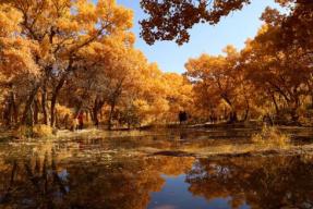 【甘肃旅游时讯】文化和旅游部:做好冬季旅游产品 加大惠民措施