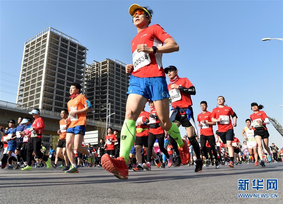 (体育)(8)马拉松——2019郑开国际马拉松赛开跑