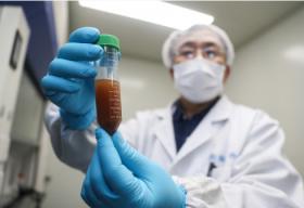 好消息!第1批疫苗已产生抗体 进入动物实验阶段