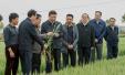 习近平主持召开农村改革座谈会:中国要富农民必须富