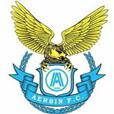 大连阿尔滨足球俱乐部