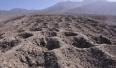 """考古学家秘鲁发现 神秘""""多腿长舌动物""""地画"""