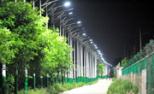 4公里村路设700盏路灯